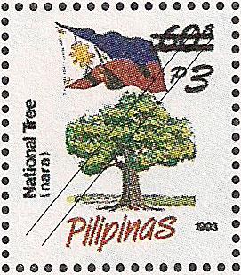 National Tree (Narra)