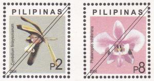 Native Philippine Orchids X