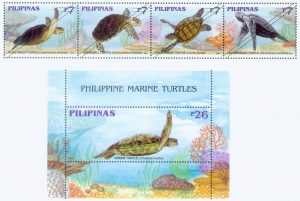 Philippine Marine Turtles
