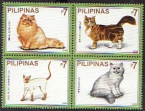 Various Breeds of Domestic Cat