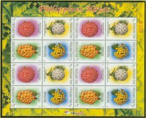 Topicals Philippine Hoyas