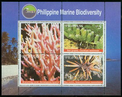 Philippine Marine Biodiversity